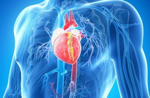 Can a beating heart get cancer?