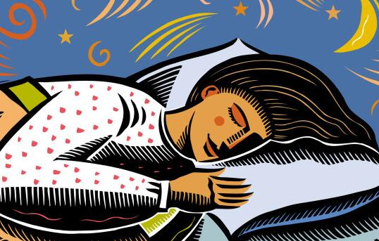 Will the olfactory organ also fall asleep during sleep?