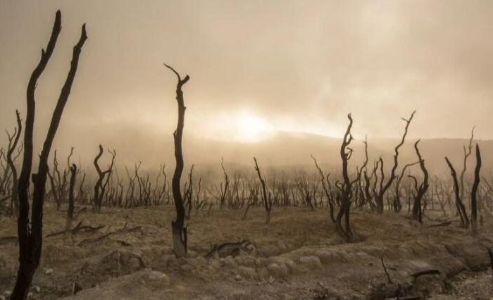 The worst drought in 1200 years will come, 2021: How much suffering will humanity suffer?